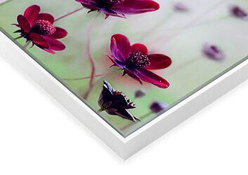 foto-hinter-echtglas-schattenfuge-weiss