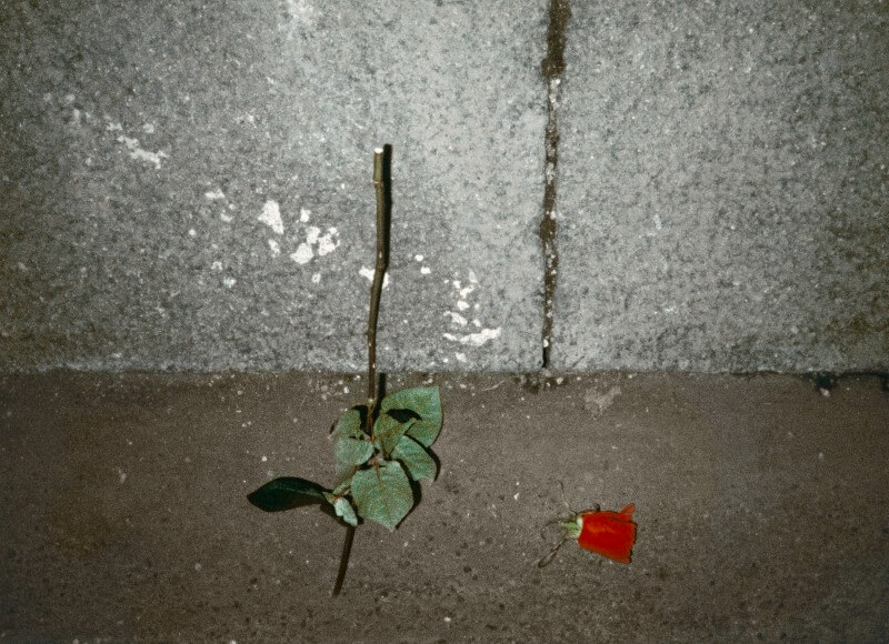 gallus-rittenberger-ausstellung-01