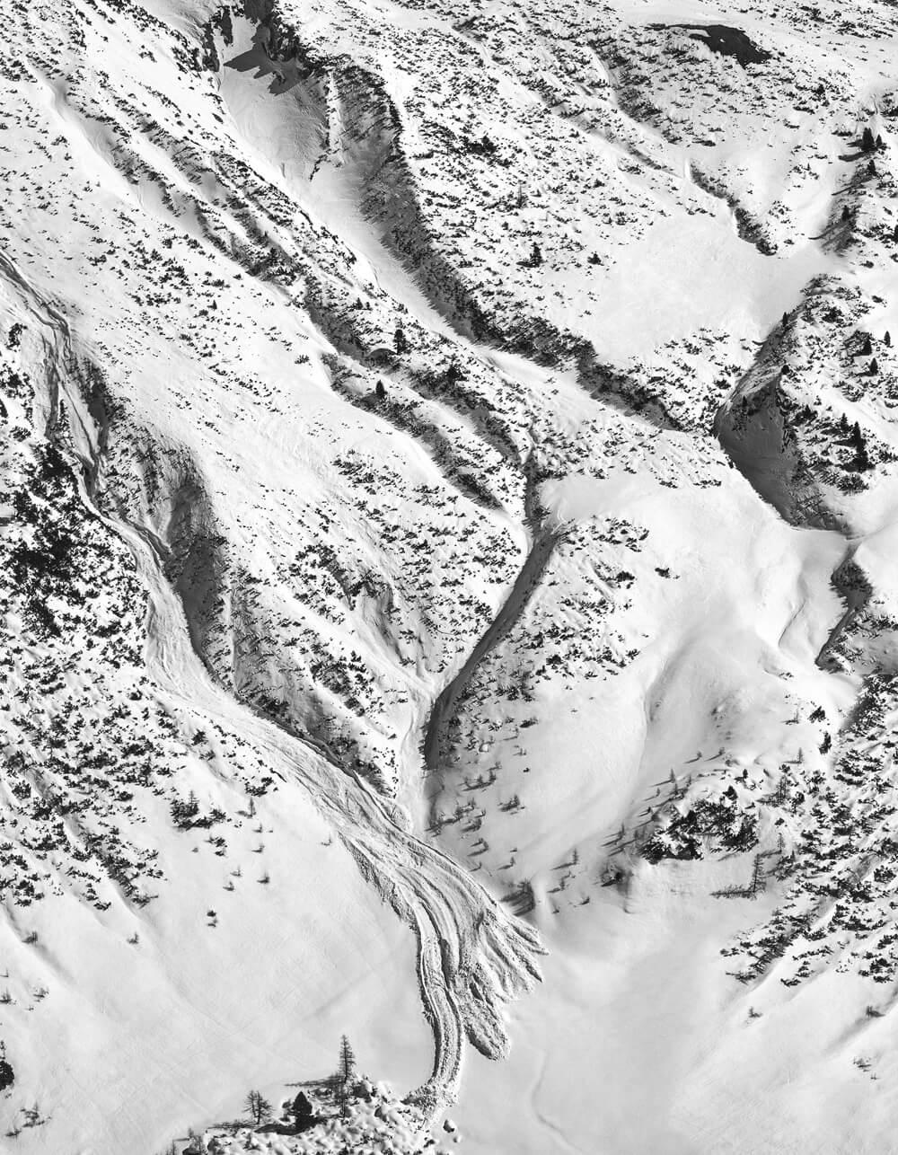 ingo-robin-avalanche
