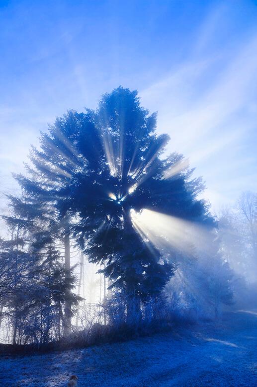 roland-fuerst-lichtflut