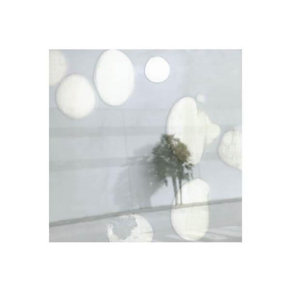 vera-nowottny-palme
